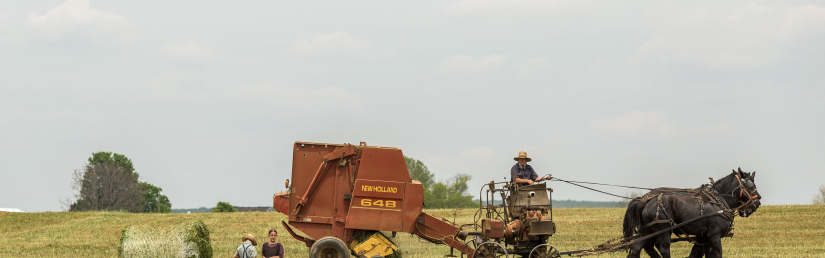 825-258-pexels-people-field-working-agriculture