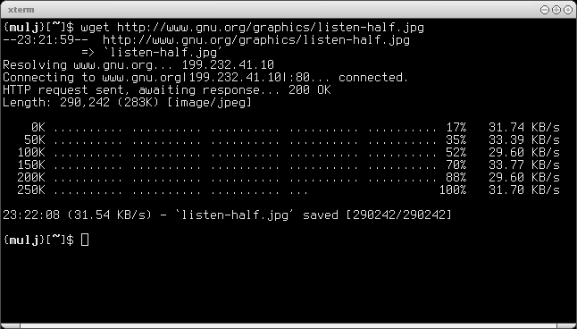 Wget-screenshot