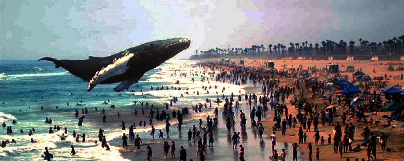 825-330-vr-magicleap